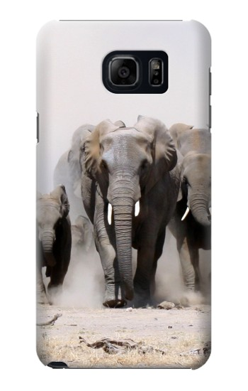 Printed African Elephant Samsung Galaxy S6 edge plus Case