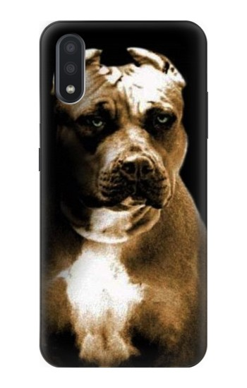 Printed PitBull Samsung Galaxy A01 Case