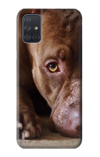 Printed PitBull Face Samsung Galaxy A71 Case