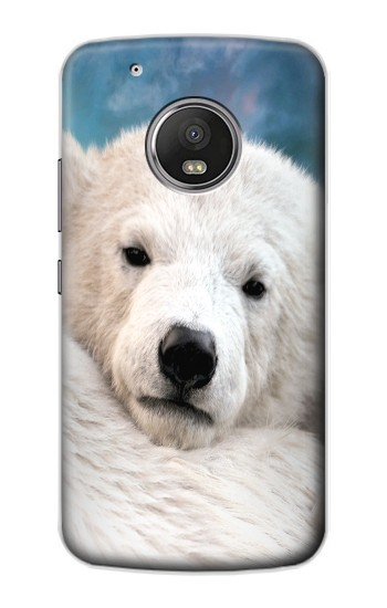 Printed Polar Bear Apple iPod Touch 5G Case