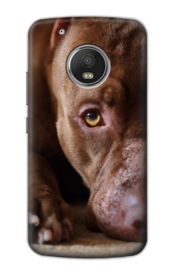 Printed PitBull Face Apple iPod Touch 5G Case