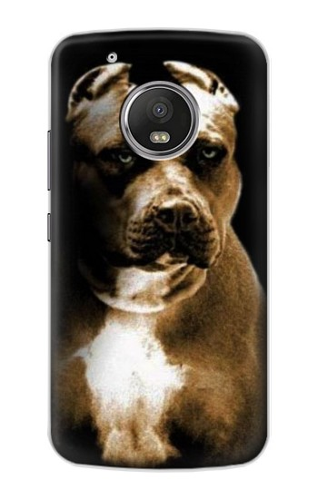 Printed PitBull Apple iPod Touch 5G Case