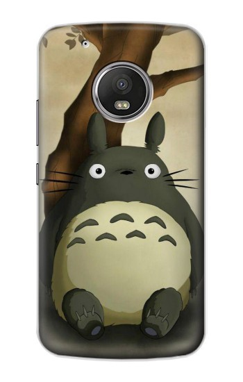 Printed My Neighbor Totoro Apple iPod Touch 5G Case