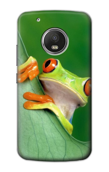 Printed Little Frog Apple iPod Touch 5G Case
