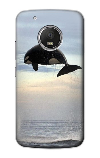 Printed Killer whale Orca Apple iPod Touch 5G Case