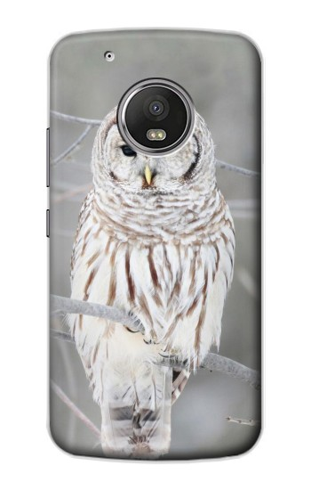 Printed Snowy Owl White Owl Apple iPod Touch 5G Case