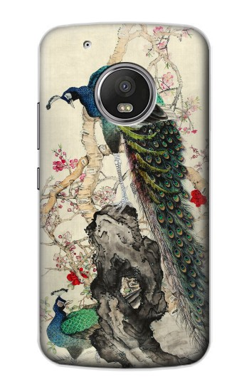 Printed Peacock Painting Apple iPod Touch 5G Case