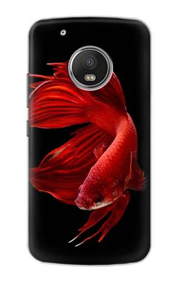 Printed Red Siamese Fighting Fish Apple iPod Touch 5G Case