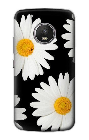 Printed Daisy flower Apple iPod Touch 5G Case