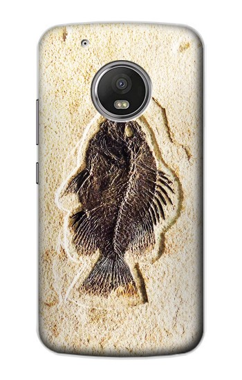 Printed Fossil Fish Apple iPod Touch 5G Case