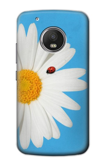 Printed Vintage Daisy Lady Bug Apple iPod Touch 5G Case