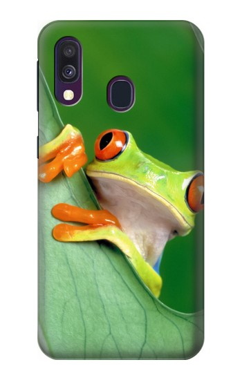 Printed Little Frog Samsung Galaxy A40 Case