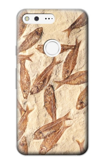 Printed Fossil Fish Google Pixel Case