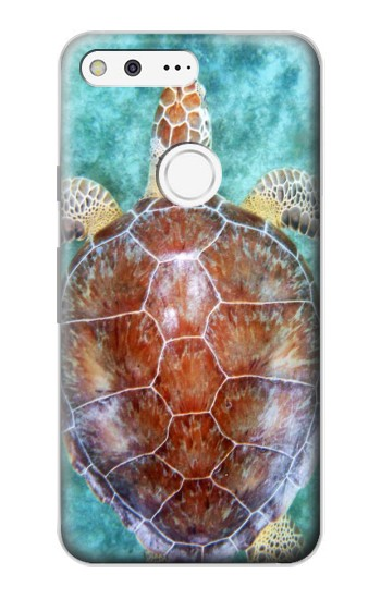 Printed Sea Turtle Google Pixel Case