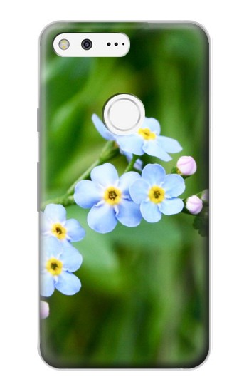 Printed Forget Me Not Google Pixel Case