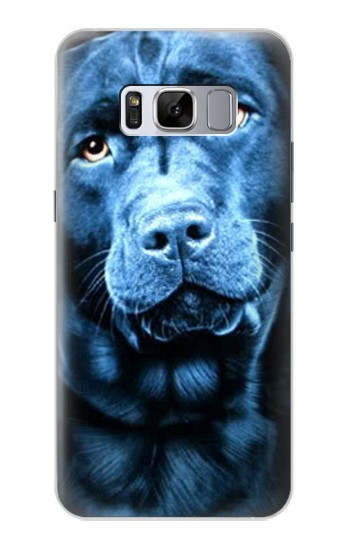 Printed Labrador Retriever Samsung Galaxy S8 Case