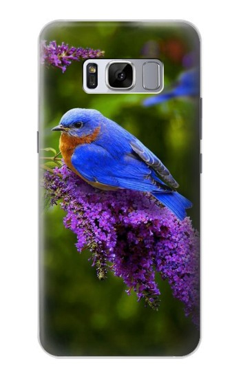 Printed Bluebird of Happiness Blue Bird Samsung Galaxy S8 Case