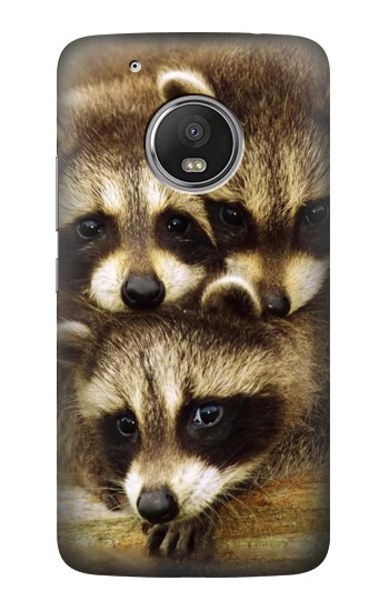 Printed Baby Raccoons HTC One (E8) Case