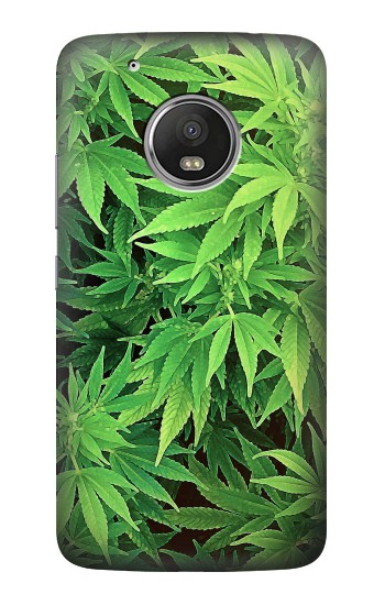 Printed Marijuana Plant HTC One (E8) Case
