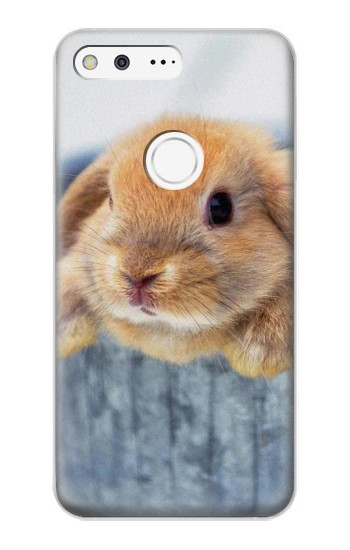 Printed Cute Rabbit Google Pixel XL Case