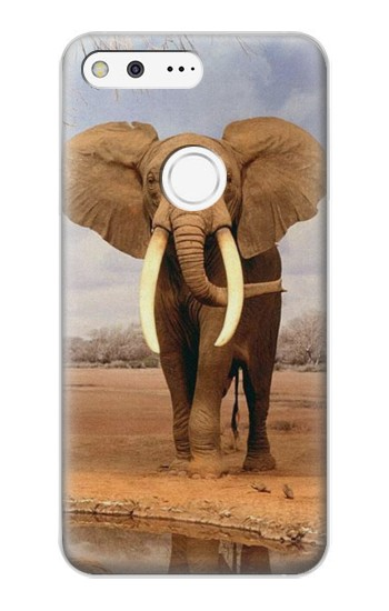 Printed African Elephant Google Pixel XL Case