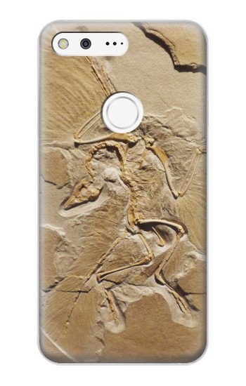 Printed Dinosaur Fossil Google Pixel XL Case