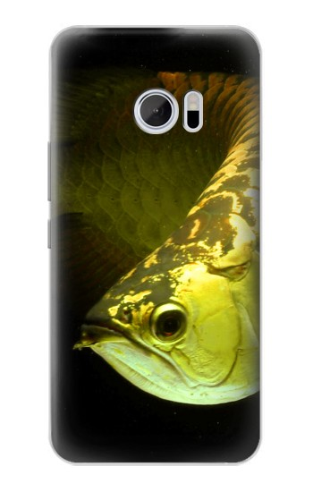 Printed Gold Arowana Fish HTC 10 Case