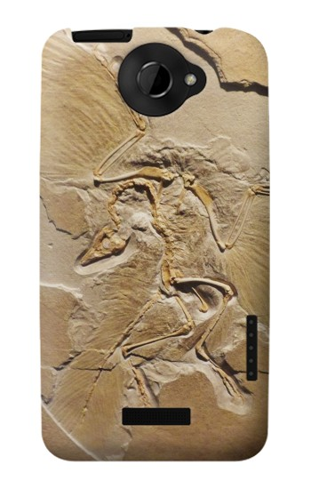 Printed Dinosaur Fossil HTC One X Case