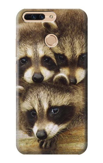 Printed Baby Raccoons Huawei Ascend MATE7 Case