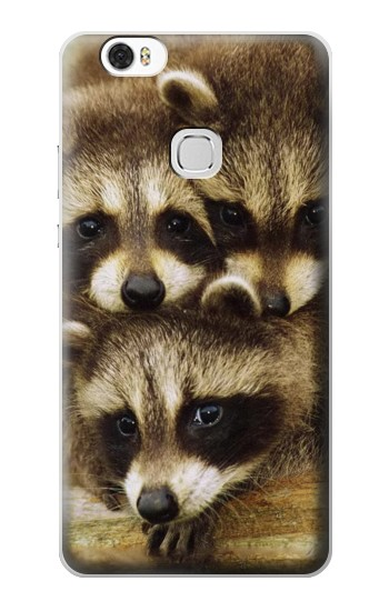 Printed Baby Raccoons Huawei Ascend G630 Case