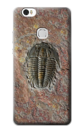Printed Trilobite Fossil Huawei Ascend G630 Case