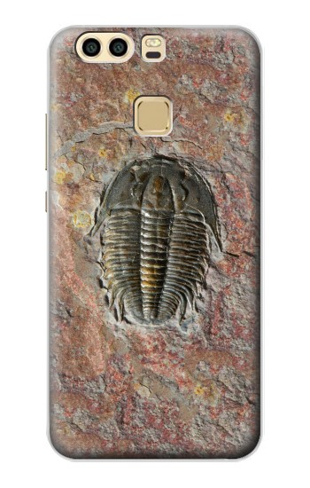 Printed Trilobite Fossil Huawei P9 Case
