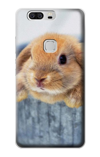 Printed Cute Rabbit Huawei Ascend G6 Case