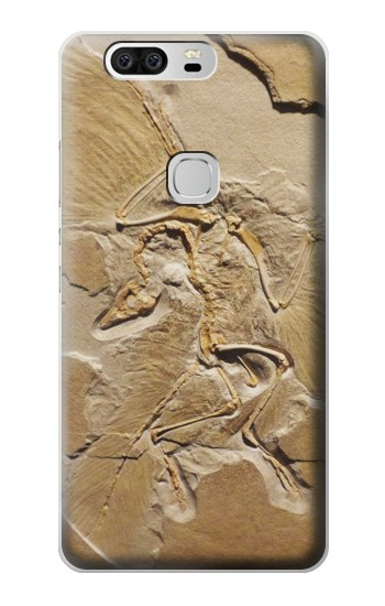 Printed Dinosaur Fossil Huawei Ascend G6 Case