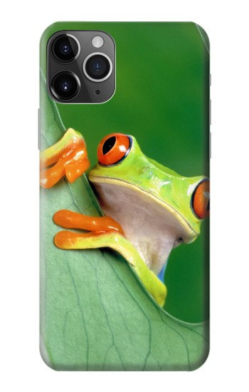 Printed Little Frog iPhone 11 Pro Case