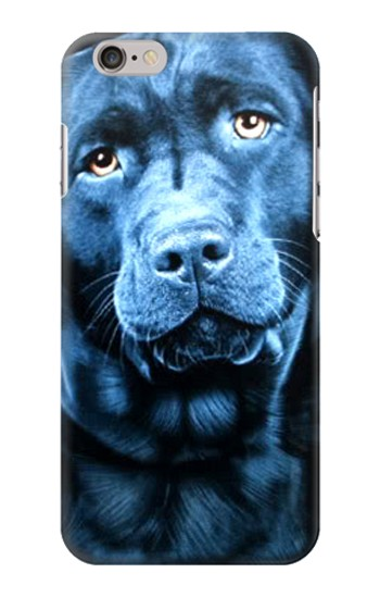 Printed Labrador Retriever Iphone 6 plus Case