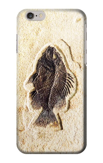 Printed Fossil Fish Iphone 6 plus Case