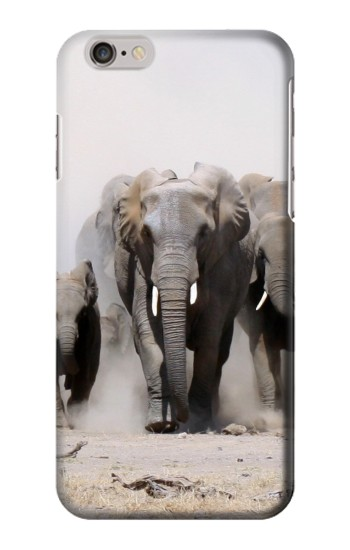 Printed African Elephant Iphone 6 plus Case