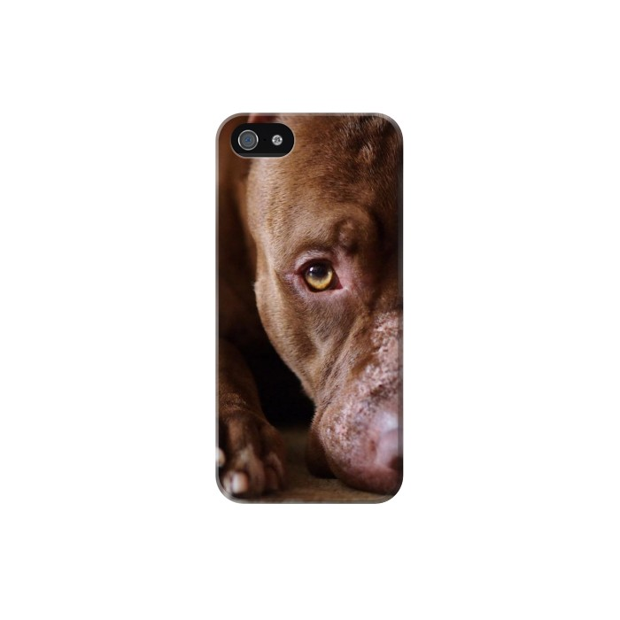 Printed PitBull Face Iphone 5 Case
