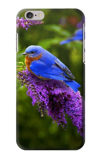 Printed Bluebird of Happiness Blue Bird Iphone 6 Case