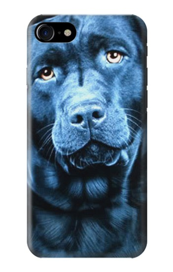 Printed Labrador Retriever Iphone 7 Case