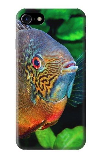 Printed Cichlid Fish Iphone 7 Case