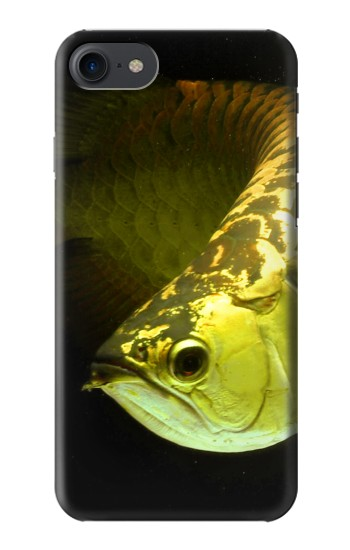 Printed Gold Arowana Fish HTC One E9+ Case
