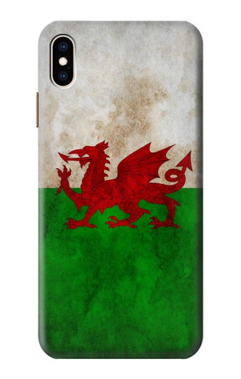 Printed Wales Red Dragon Flag iPhone XS Max Case