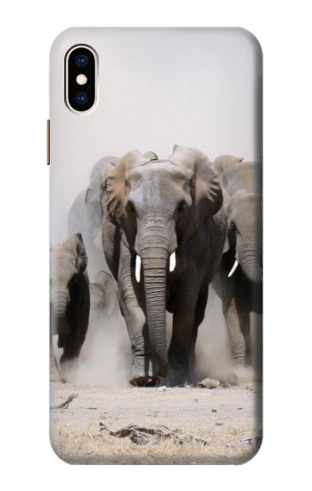 Printed African Elephant iPhone XS Max Case