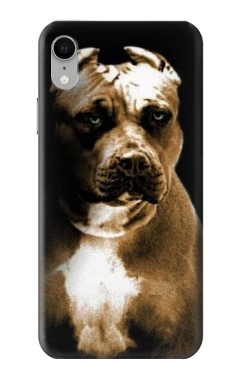 Printed PitBull iPhone XR Case