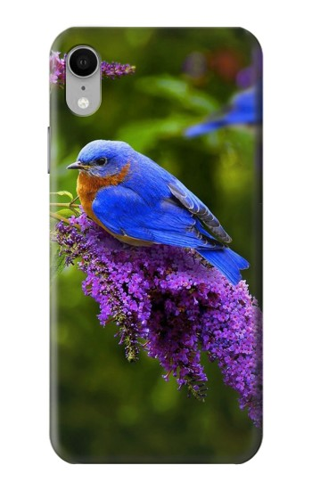 Printed Bluebird of Happiness Blue Bird iPhone XR Case