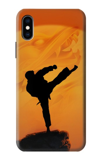 Printed Kung Fu Karate Fighter iPhone XS Case