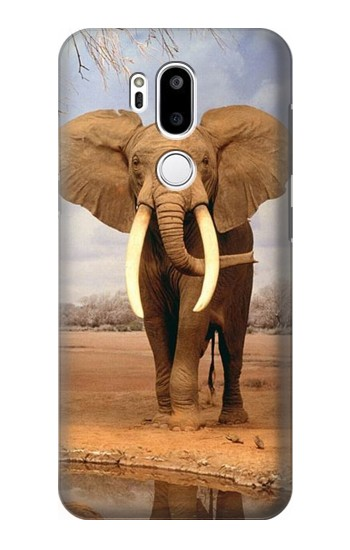 Printed African Elephant LG G7 ThinQ Case