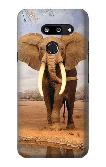 Printed African Elephant LG G8 ThinQ Case
